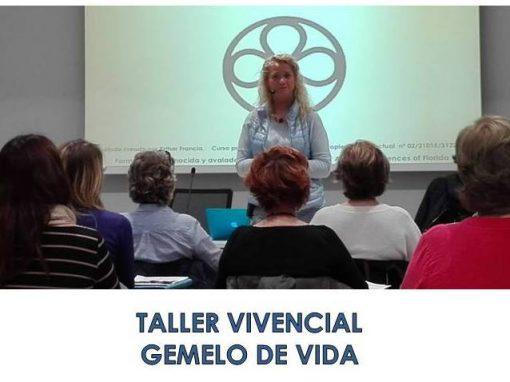 TALLER  GEMELO DE VIDA