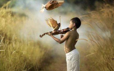 Encuentra la melodía de tu alma, tu MAO
